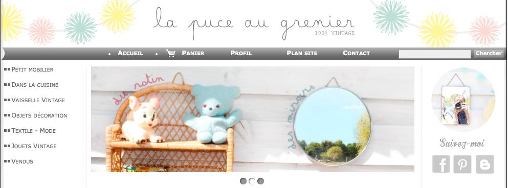 www.lapuce-augrenier.fr