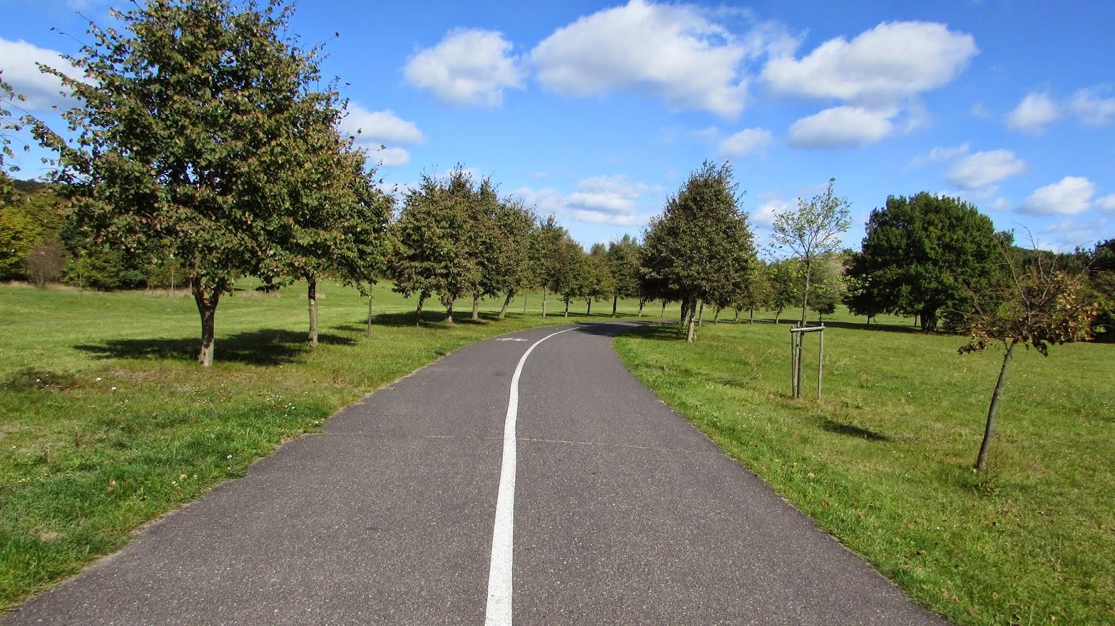 Biegać czy nie biegać- oto jest pytanie