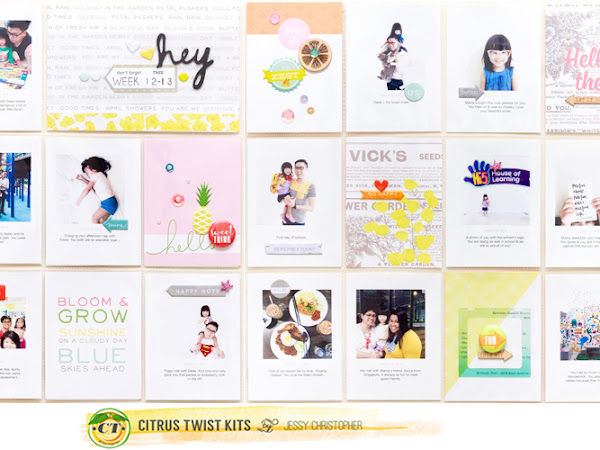 Citrus Twist Kits : June Reveal