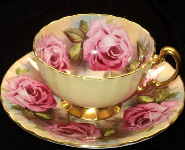 teacup full of roses essays Teacup full of roses top shelves top shelves for teacup full of roses (showing 1-33 of 33) to-read 60 people currently-reading 4 people forever-young-ya-fiction.