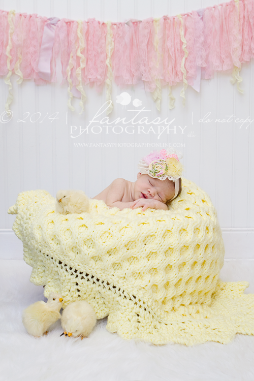 newborn photographers in winston salem, nc