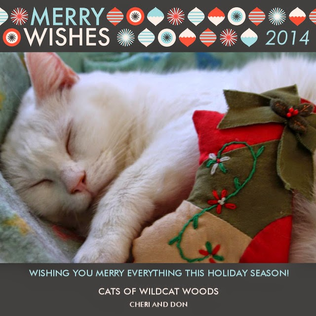 Grab Our Holiday Card for Your Blog!