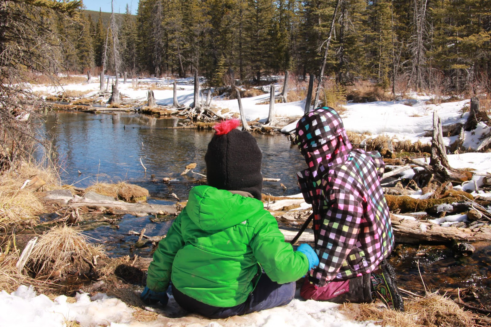 Family Adventures In The Canadian Rockies Spring Hiking