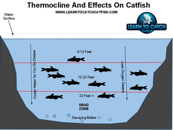 Trotline fishing for catfish quotes for Jug fishing for catfish