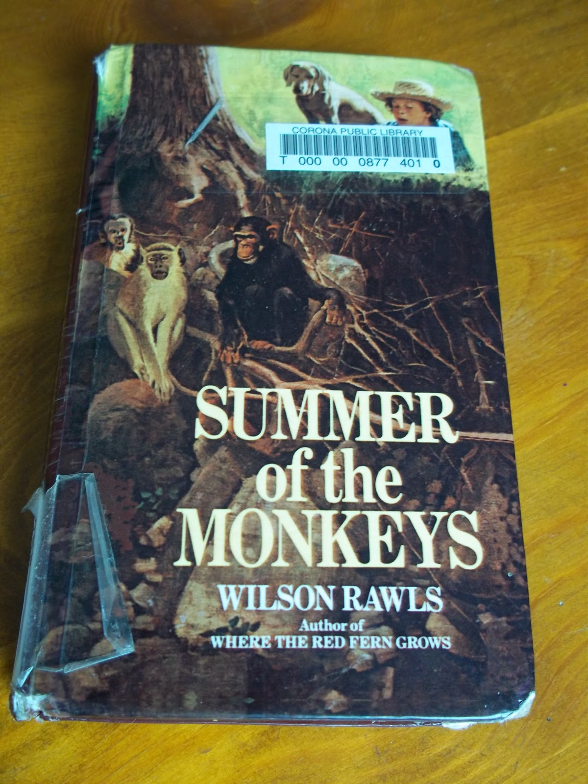 an analysis of jay berry lee in summer of the monkeys by wilson rawls In wilson rawls novel summer of the monkeys jay berry lee in wilson rawls novel summer of the monkeys monkeys: jay berry and his conflicts essay.