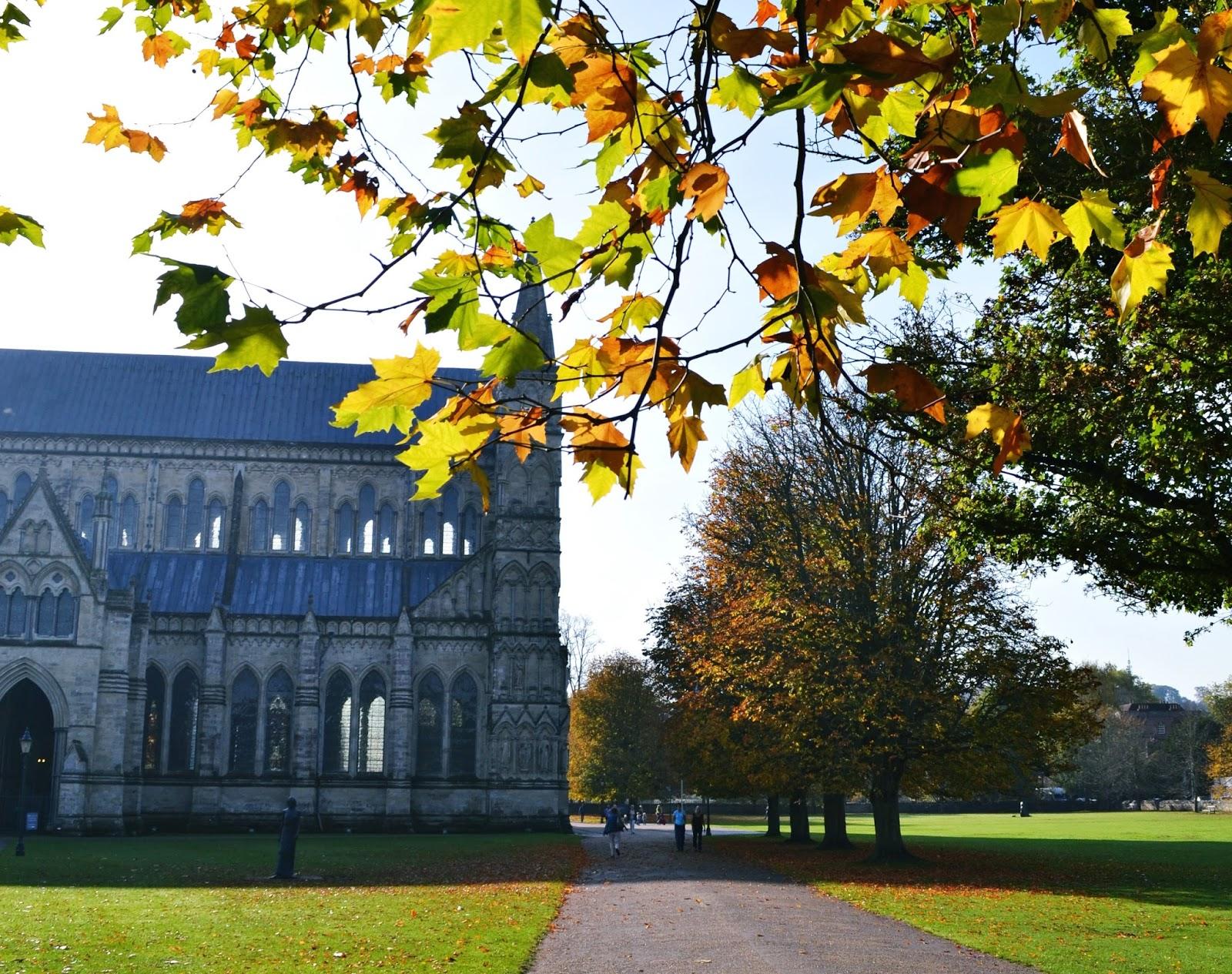 salisbury cathedral autumn