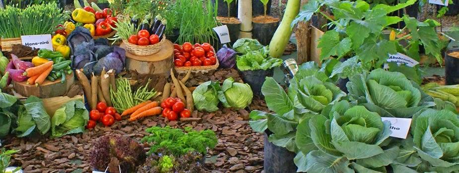 Jardinería y horticultura