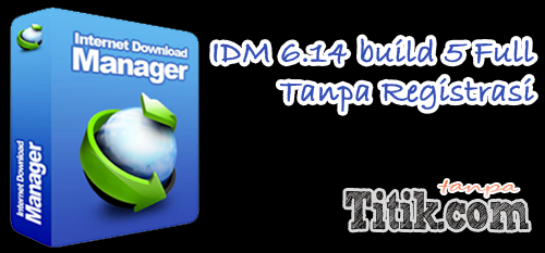 Download IDM 6.14 build 5 Final Full