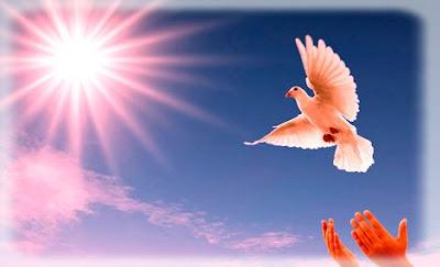 Pensées sur la paix