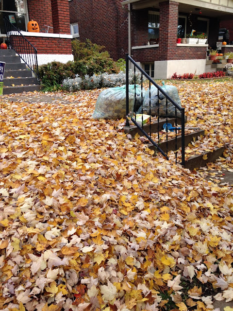 ADDled - Autumn Leaves Are Falling Down - Yard