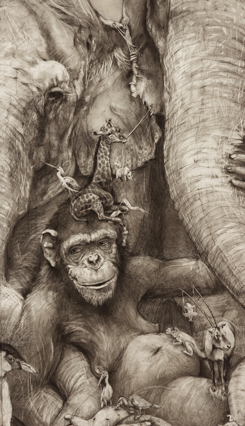 Adonna Khare artwork and Drawings Animal life