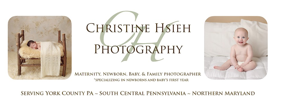 Christine Hsieh Photography South Central PA and Northern Maryland Newborn And Baby Photographer