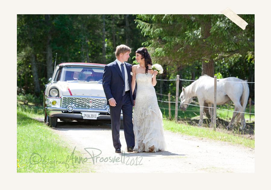 pulmafoto-pruutpaar-jalutab