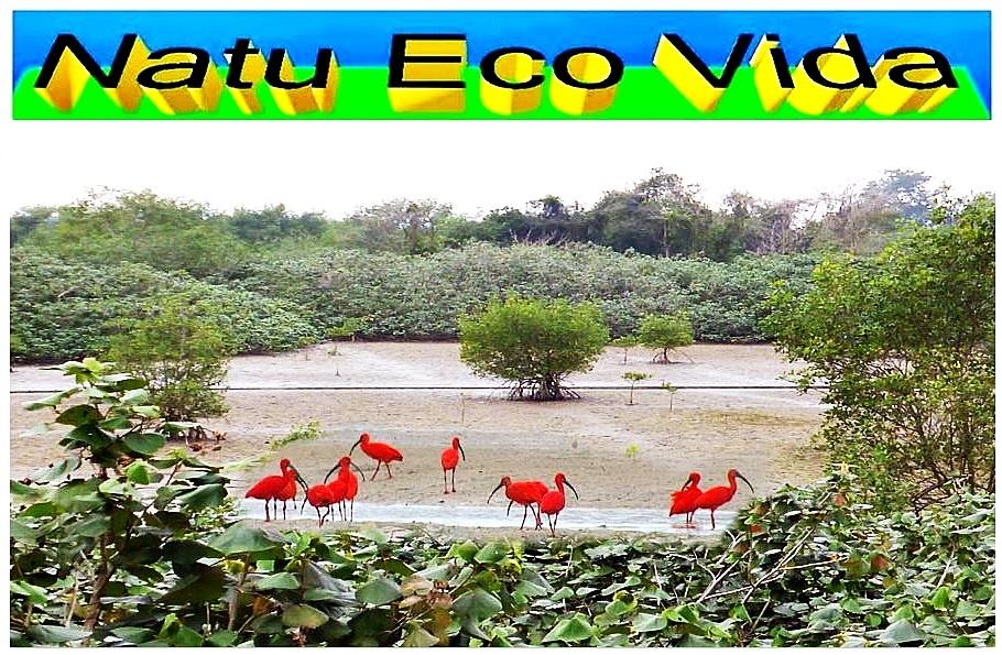 Natu Eco Vida