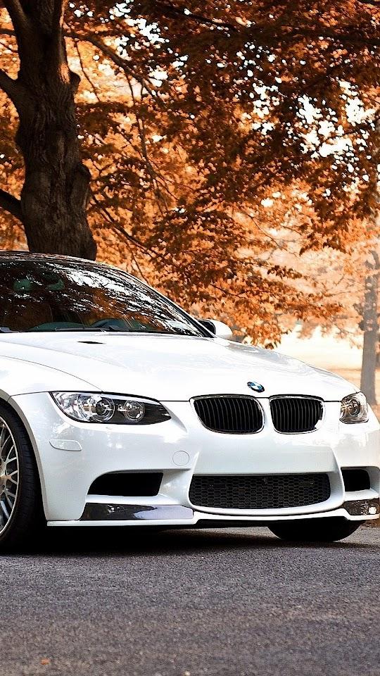 BMW M3 White Autumn Background  Galaxy Note HD Wallpaper