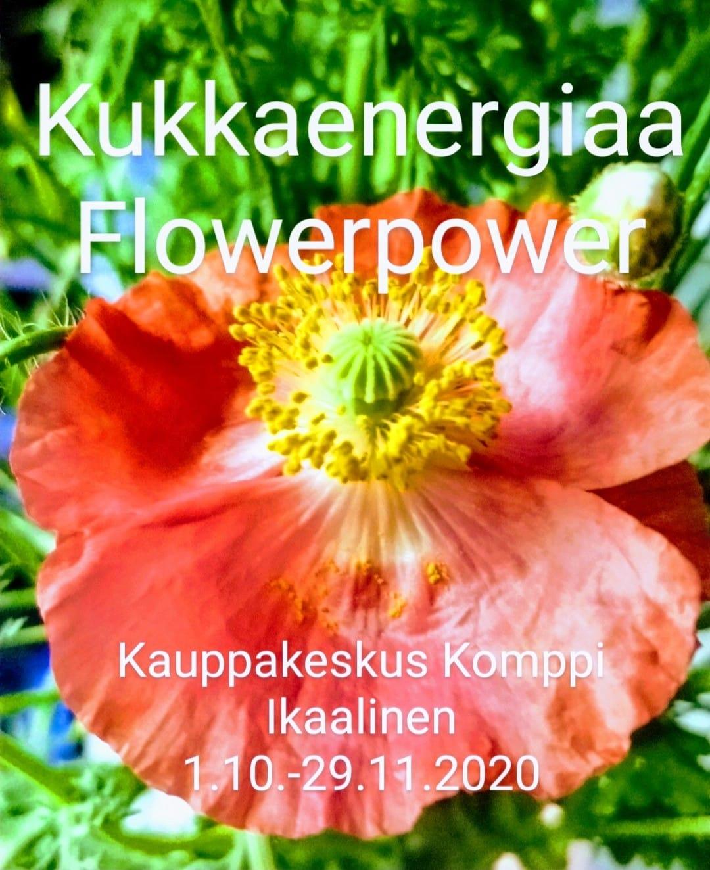 Flowerpower-näyttely