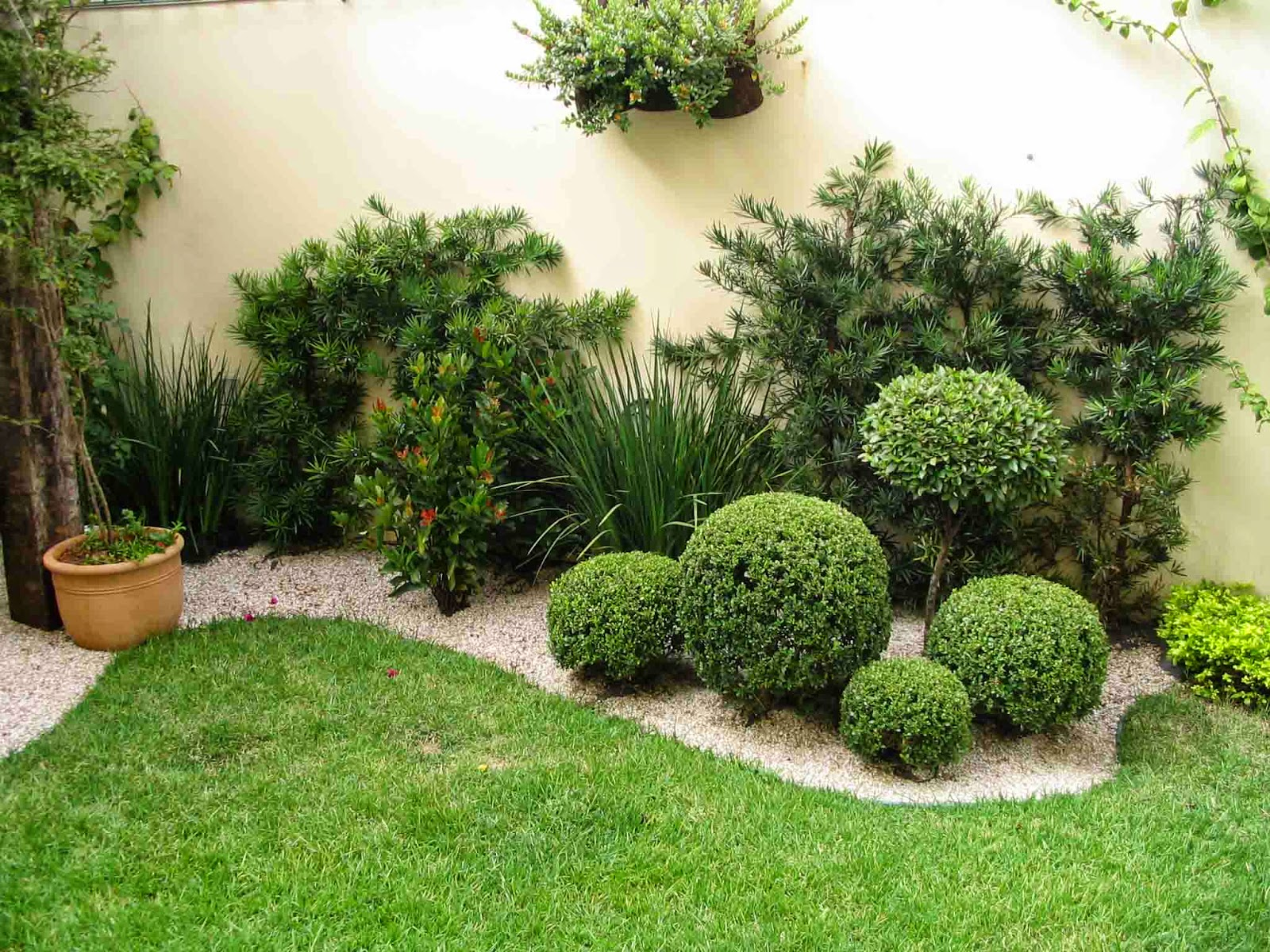 AGRO PESQUISAS: Como escolher plantas para o jardim