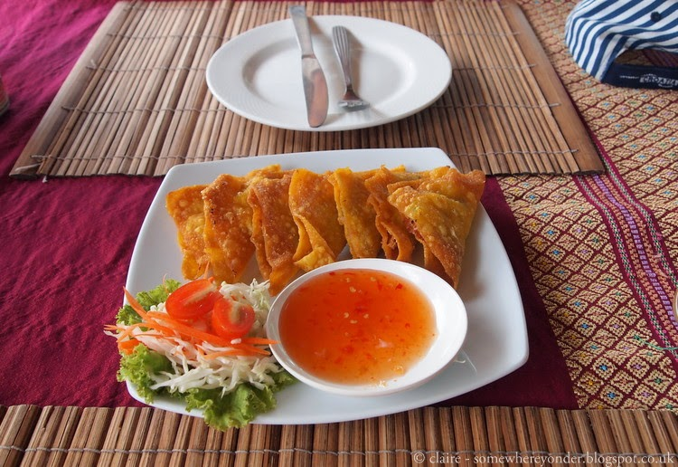 Chicken and vegetable wantons - Ko Phi Phi Thailand