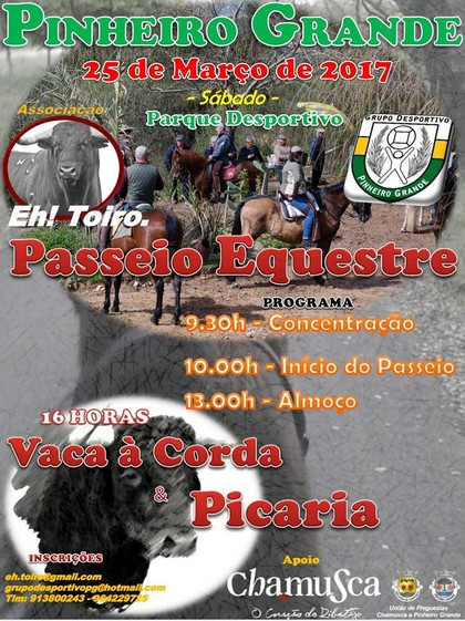 Pinheiro Grande (Chamusca)- Vaca à Corda 2017