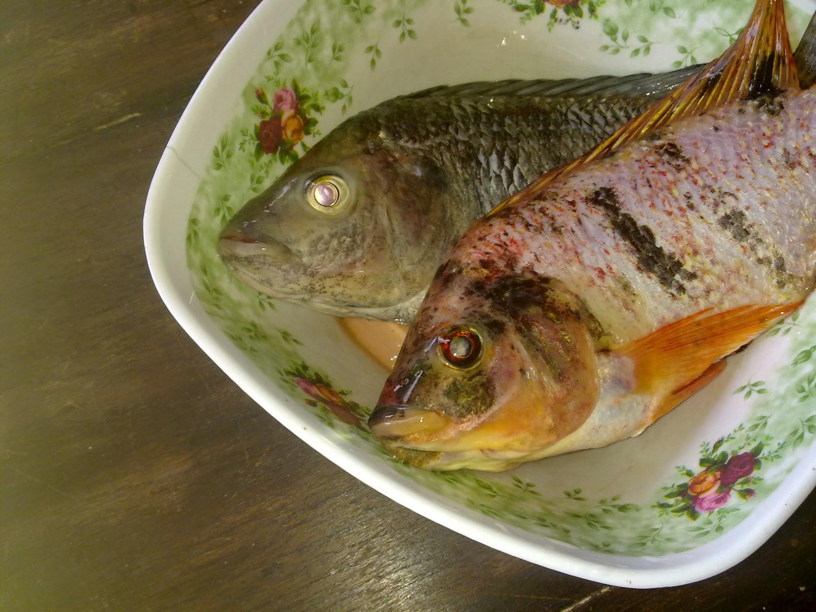 Cara Membuat Keripik Ikan Nila dan Mujair
