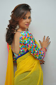 Shilpa chakravarthy gorgeous photos-thumbnail-10