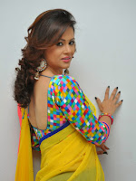 Shilpa Chakravarthy looking Gorgeous in Saree-cover-photo