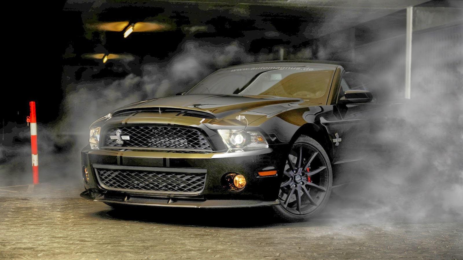 Shelby super snake mustang pinterest super snake ford mustang and ford