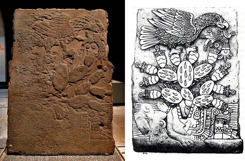 Palaeos, la historia de la Vida en la Tierra: Las especies de la ...