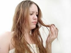 Some Tip To Overcome Dry Hair