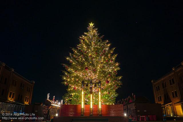 赤レンガ倉庫 イルミネーション クリスマスツリー