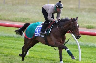 Foto kuda pacuan bernama Verema saat berlatih pacuan