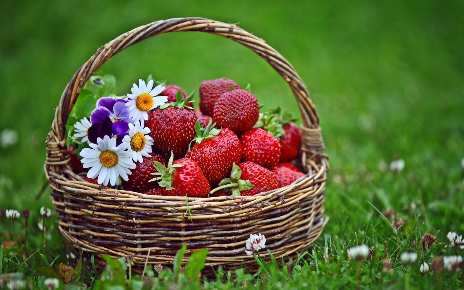 imagenes de frutas para colorear: