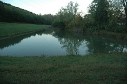 9. Pond at Sterchi Hills Greenway Trail.