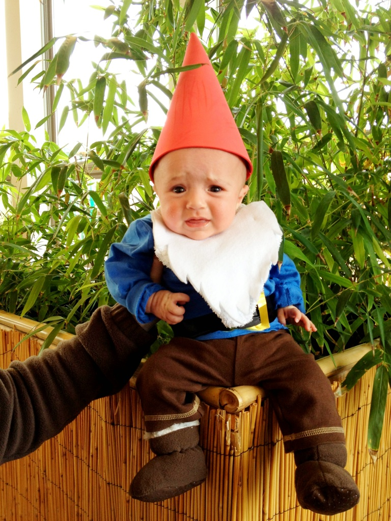Joy With Sugar On Top Lawn Gnome