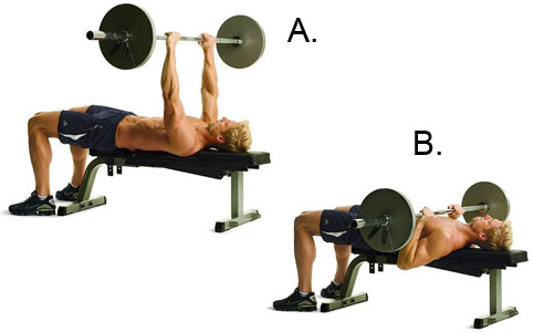 How To Build A Body by Jett Lee's Blog: 5. Bench press