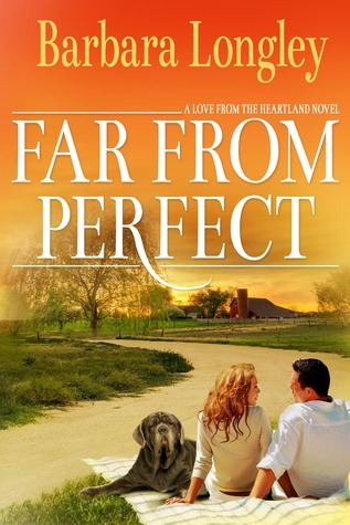 Far From Perfect book cover