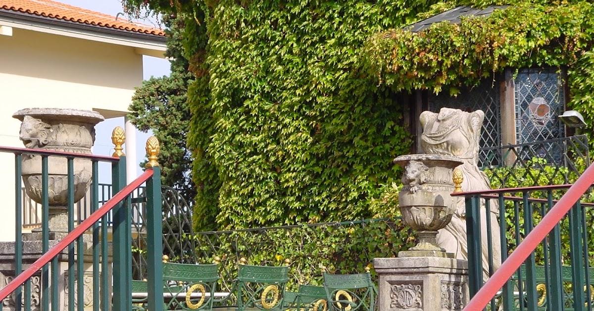 Jardineria eladio nonay copas cl sicas jardiner a eladio - Jardineria eladio nonay ...