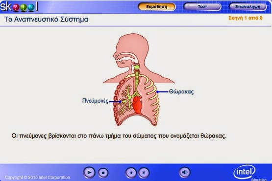 http://www.e-yliko.gr/htmls/greek_skoool/biology/respiratory_system/launch.html