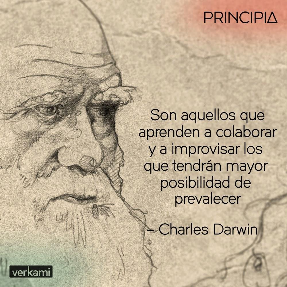 ¡Haz que Principia sea una realidad!