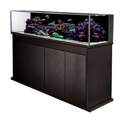 http://www.readysetreef.com/reef-aquarium-nano-refugium/reef-aquarium-nano/innovative-marine-nuvo-aquariums/innovative-marine-sr-120-nuvo-aquarium