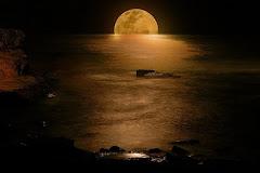 Luna nadando