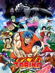 Ver online descargar Toriko Anime Anime Sub Español