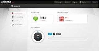 mega online storage