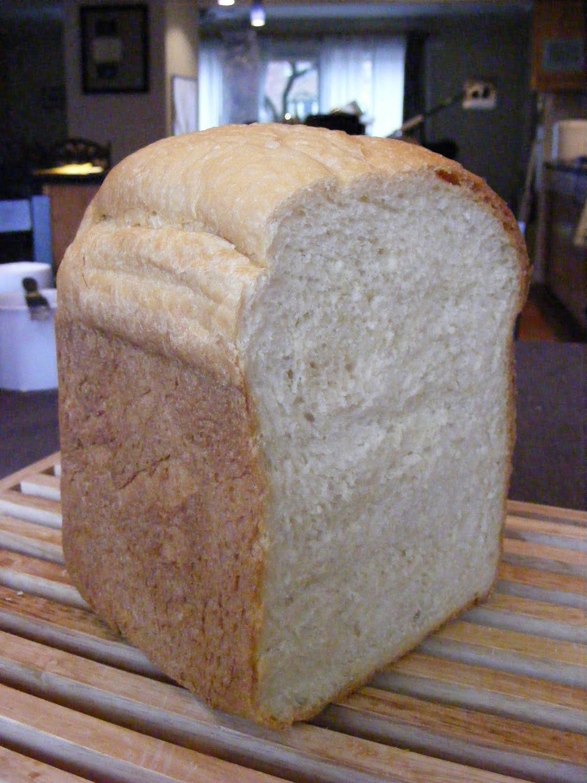 Bread Machine Wheat Bread Recipe