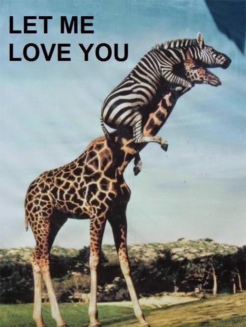 Contoh Surat Cinta You Introduced Me To Love Bahasa