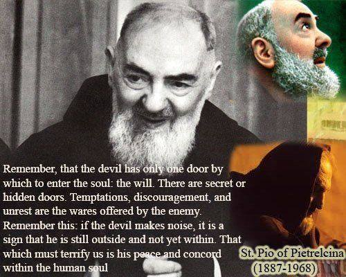 Padre Pio Quotes Little Plant Of Stfrancis Stpadre Pio Quotes