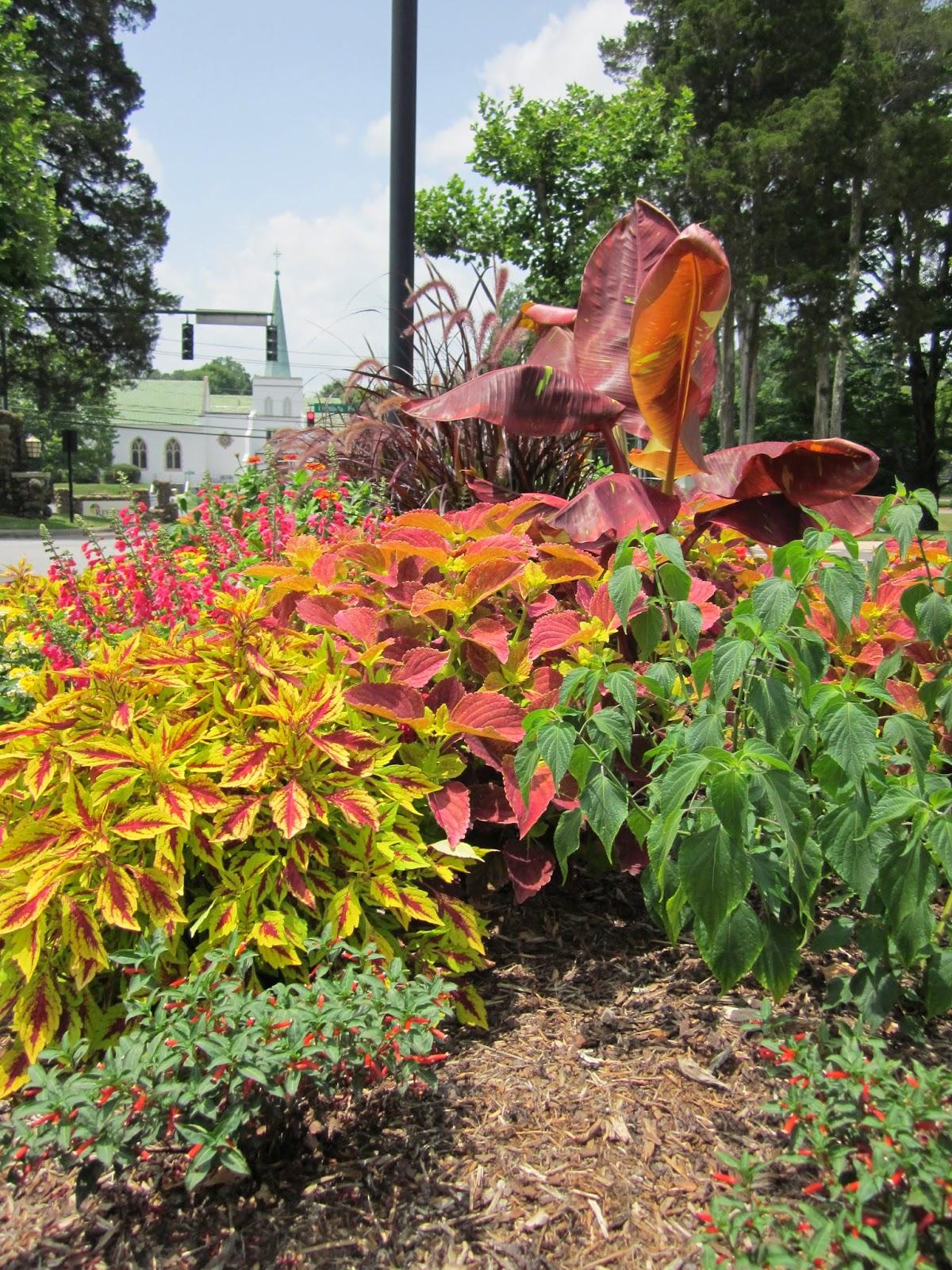 Beautiful Flower Garden Near Wake Forest University © Katrena