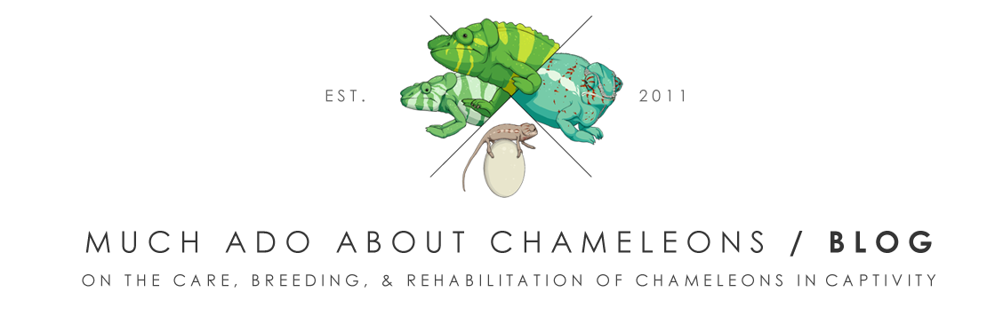 Much Ado About Chameleons