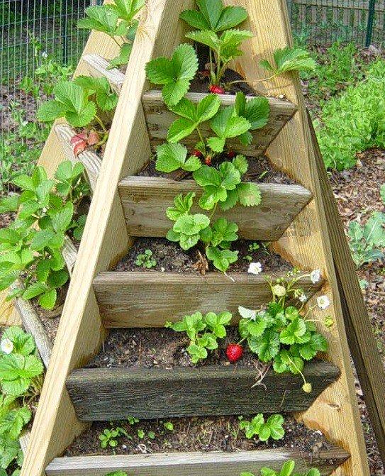 Welcome to the green heart den ideas for vertical for Vertical garden tower