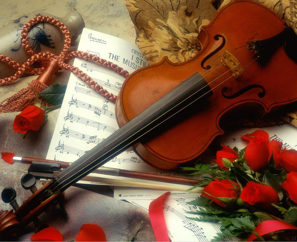HD Wallpapers Pics: Violin Pictures Wallpapers